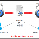 RSA Algorithm in C and C++ (Encryption and Decryption)