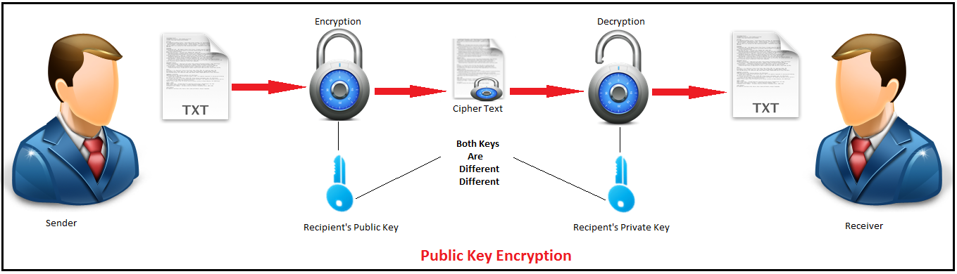 RSA Algorithm in C and C++ (Encryption and Decryption) - The